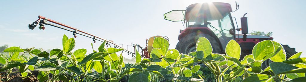 Farmers win big with dicamba ruling