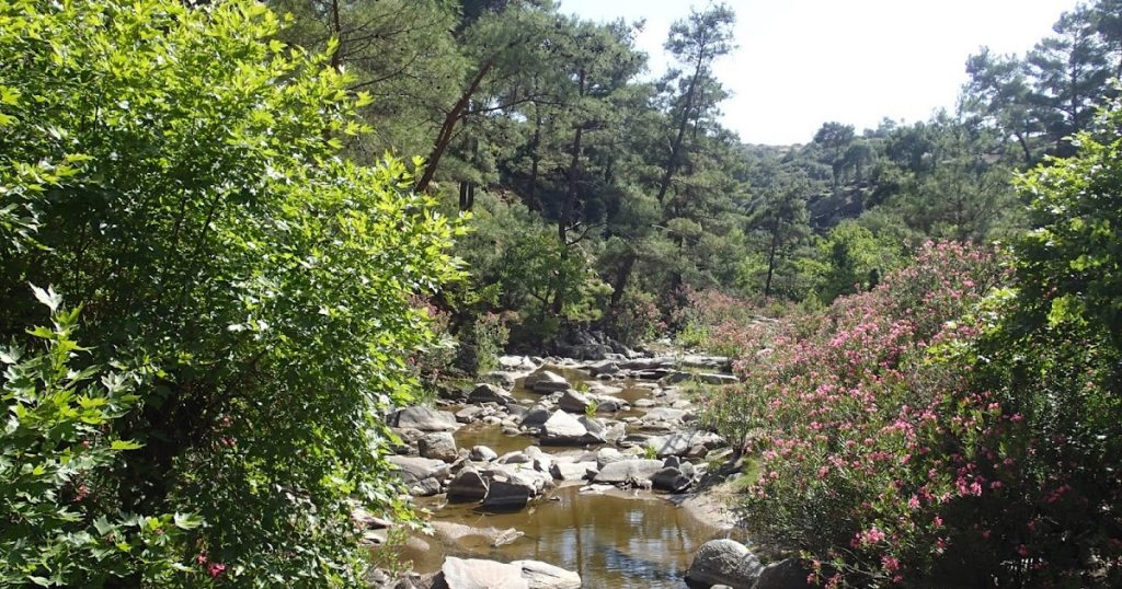 What are perennial, intermittent and ephemeral streams?